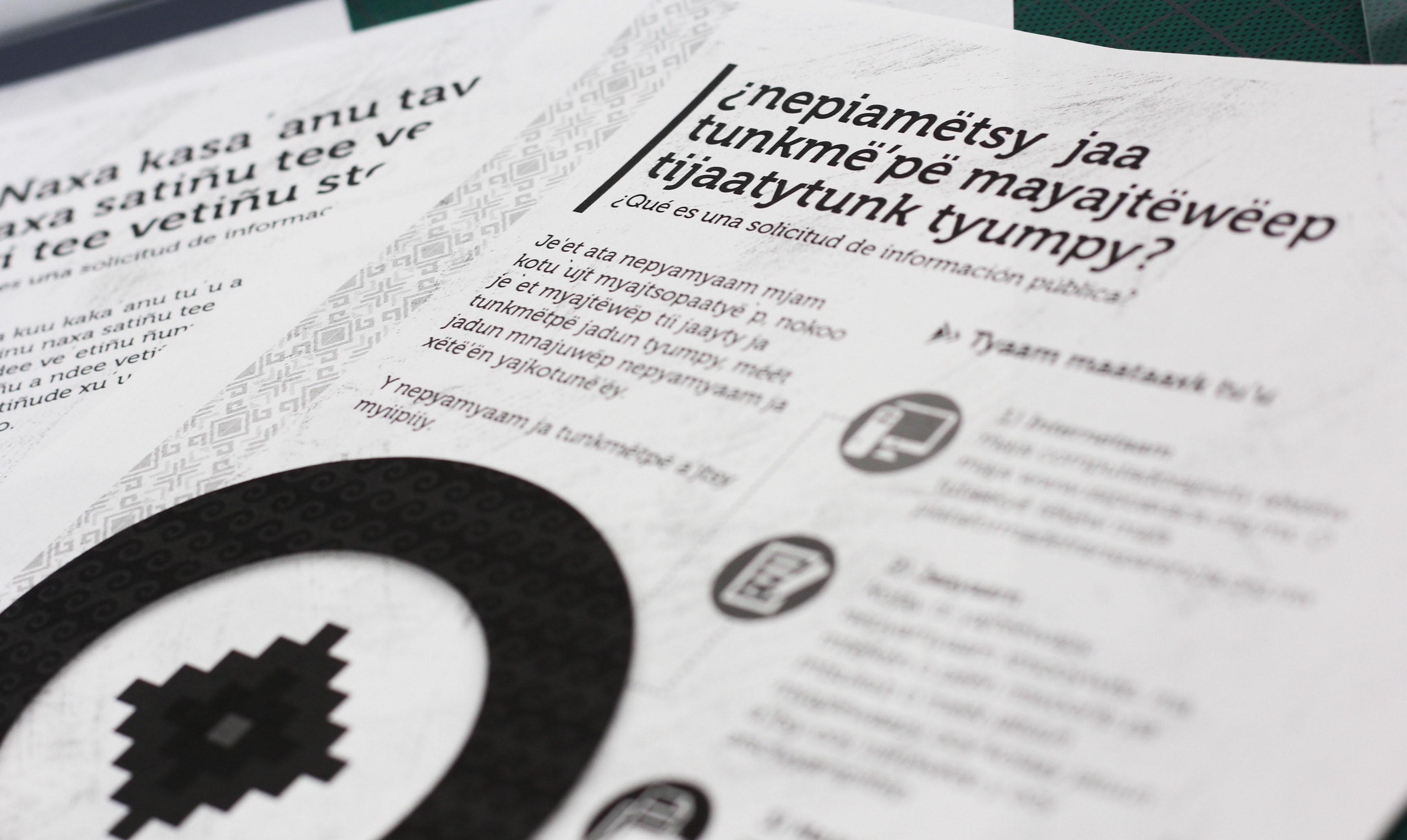 PRESENTARÁ IAIPO PROYECTO DE ACCESO A LA INFORMACIÓN EN LENGUAS INDÍGENAS